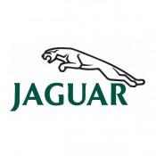 Ягуар (Jaguar)